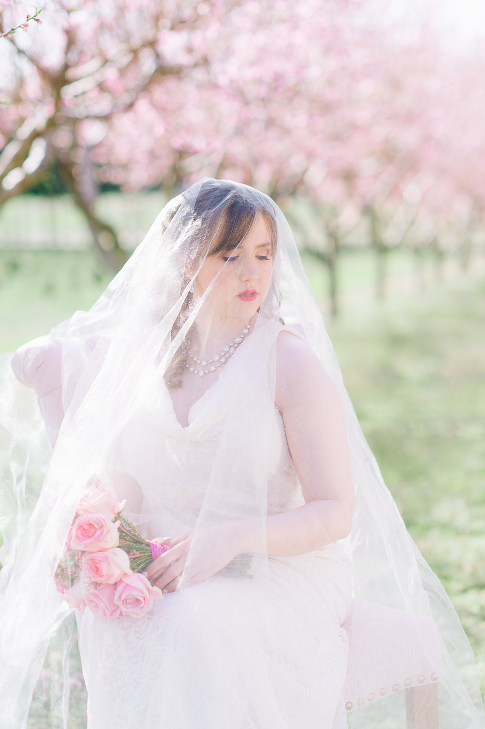 springwedding_cherryblossoms_virginiaphotographer_youseephotography_styledshoot (485).jpg