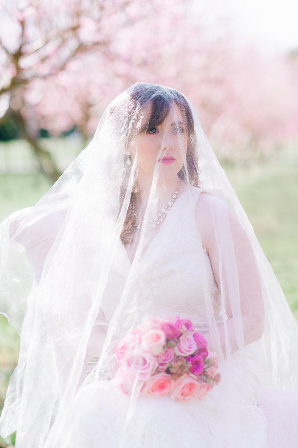 springwedding_cherryblossoms_virginiaphotographer_youseephotography_styledshoot (489).jpg