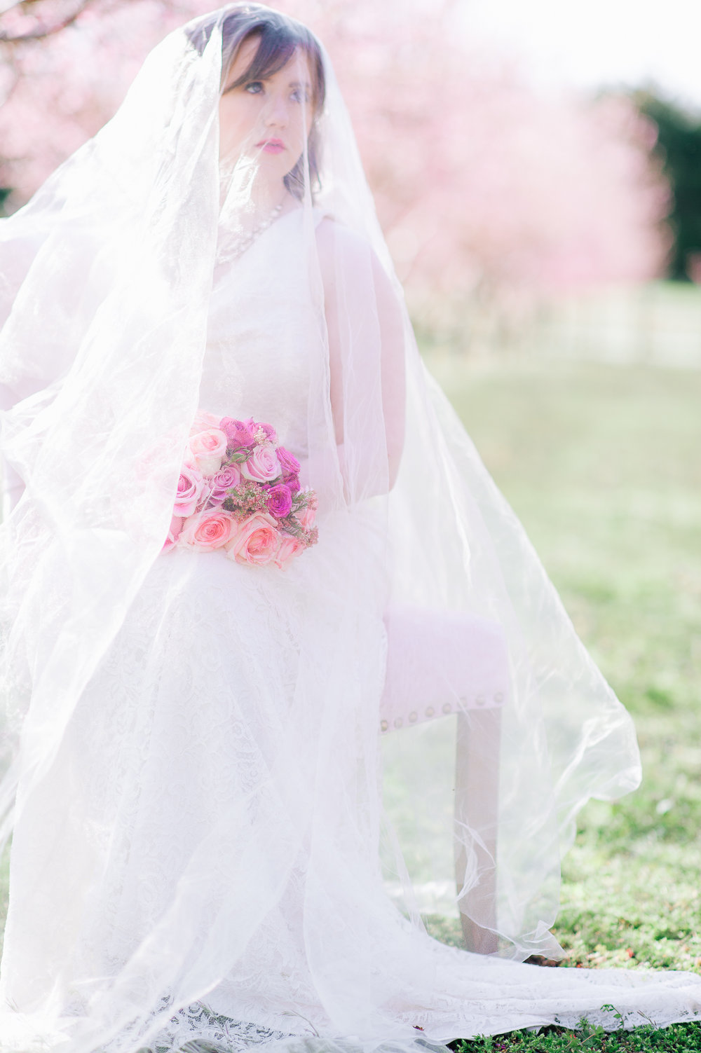 springwedding_cherryblossoms_virginiaphotographer_youseephotography_styledshoot (495).jpg