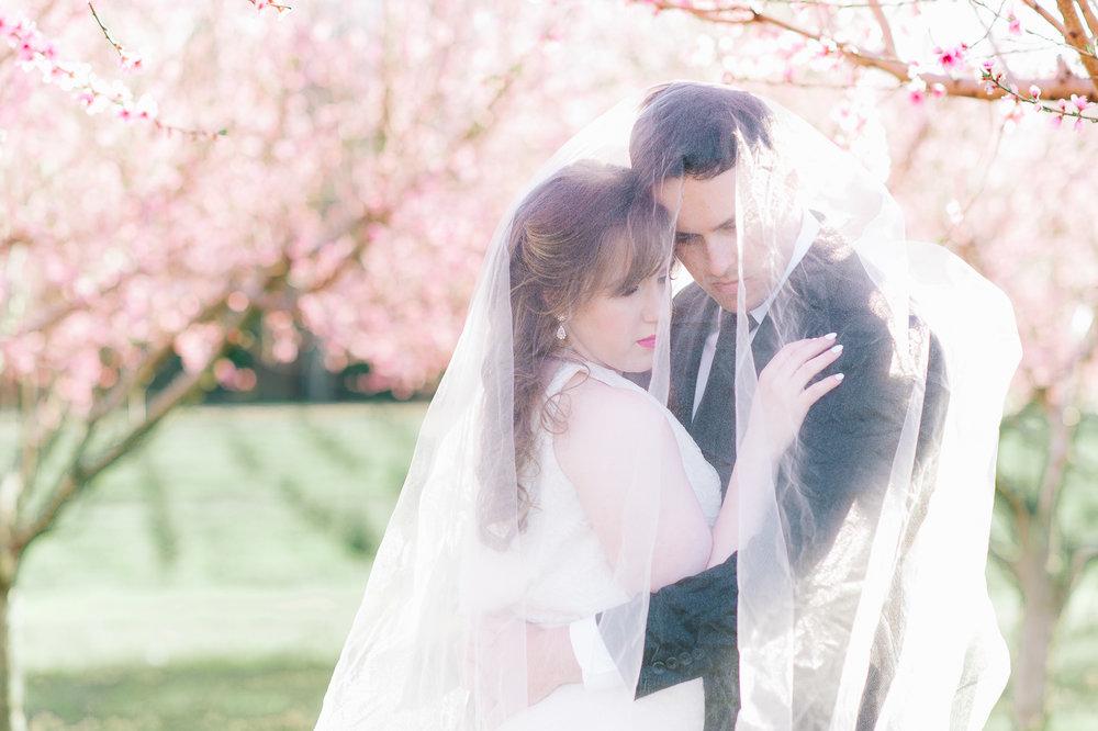 springwedding_cherryblossoms_virginiaphotographer_youseephotography_styledshoot (531).jpg