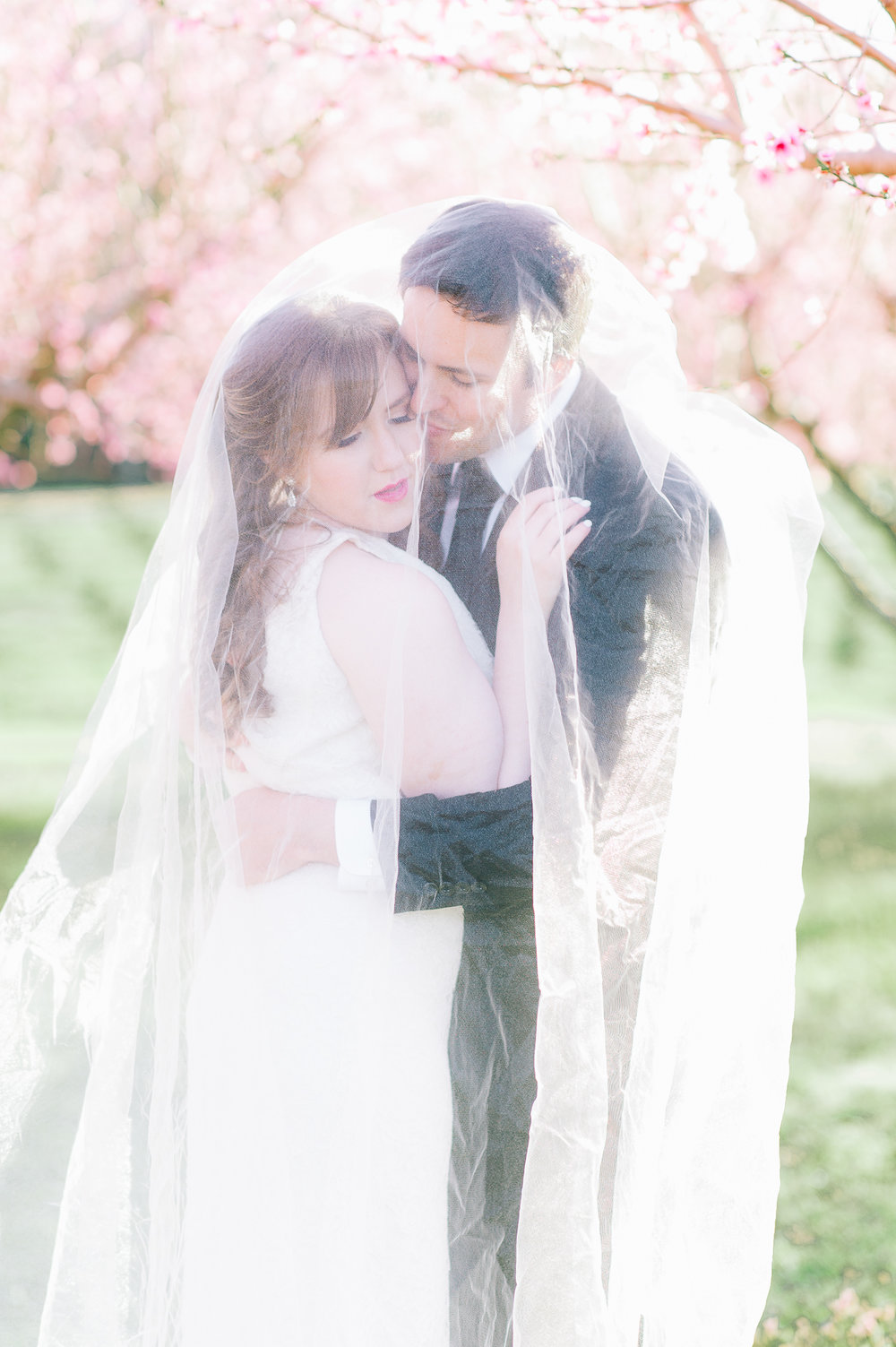 springwedding_cherryblossoms_virginiaphotographer_youseephotography_styledshoot (532).jpg