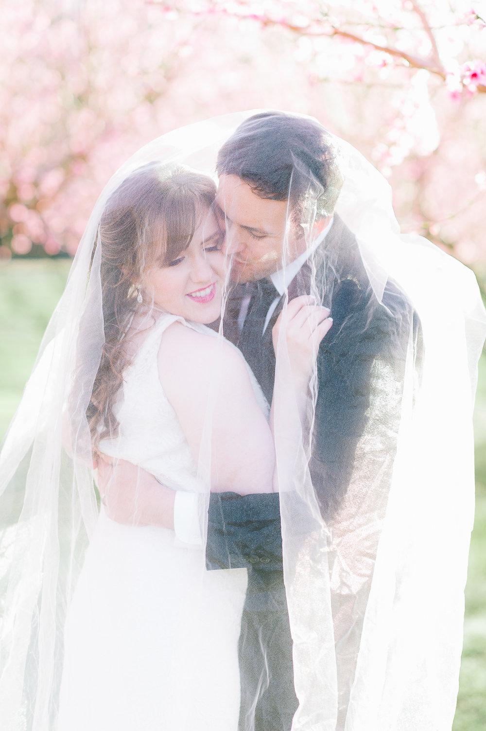 springwedding_cherryblossoms_virginiaphotographer_youseephotography_styledshoot (533).jpg