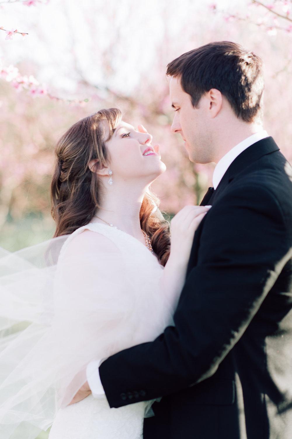springwedding_cherryblossoms_virginiaphotographer_youseephotography_styledshoot (538).jpg