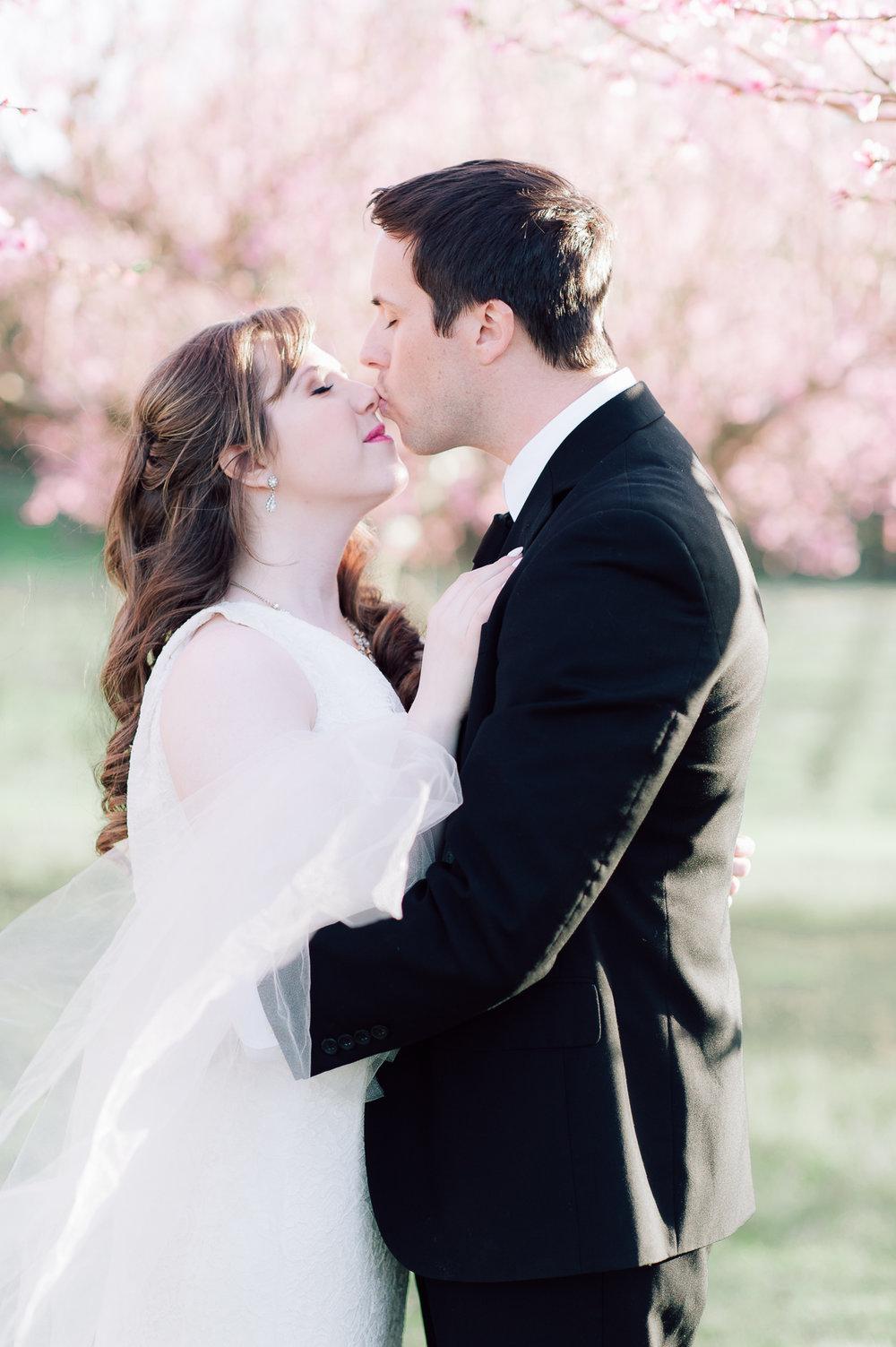 springwedding_cherryblossoms_virginiaphotographer_youseephotography_styledshoot (540).jpg