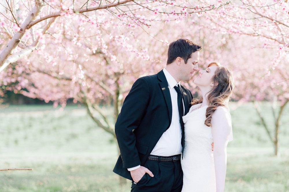 springwedding_cherryblossoms_virginiaphotographer_youseephotography_styledshoot (569).jpg