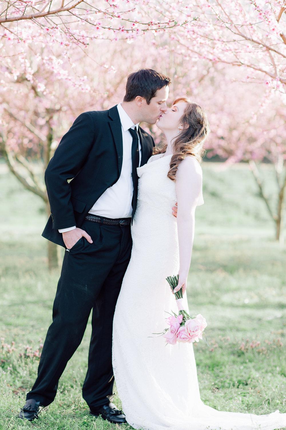 springwedding_cherryblossoms_virginiaphotographer_youseephotography_styledshoot (572).jpg