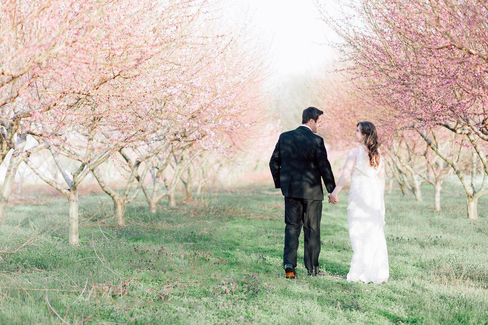 springwedding_cherryblossoms_virginiaphotographer_youseephotography_styledshoot (574).jpg
