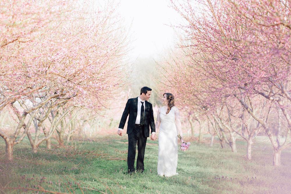 springwedding_cherryblossoms_virginiaphotographer_youseephotography_styledshoot (577).jpg