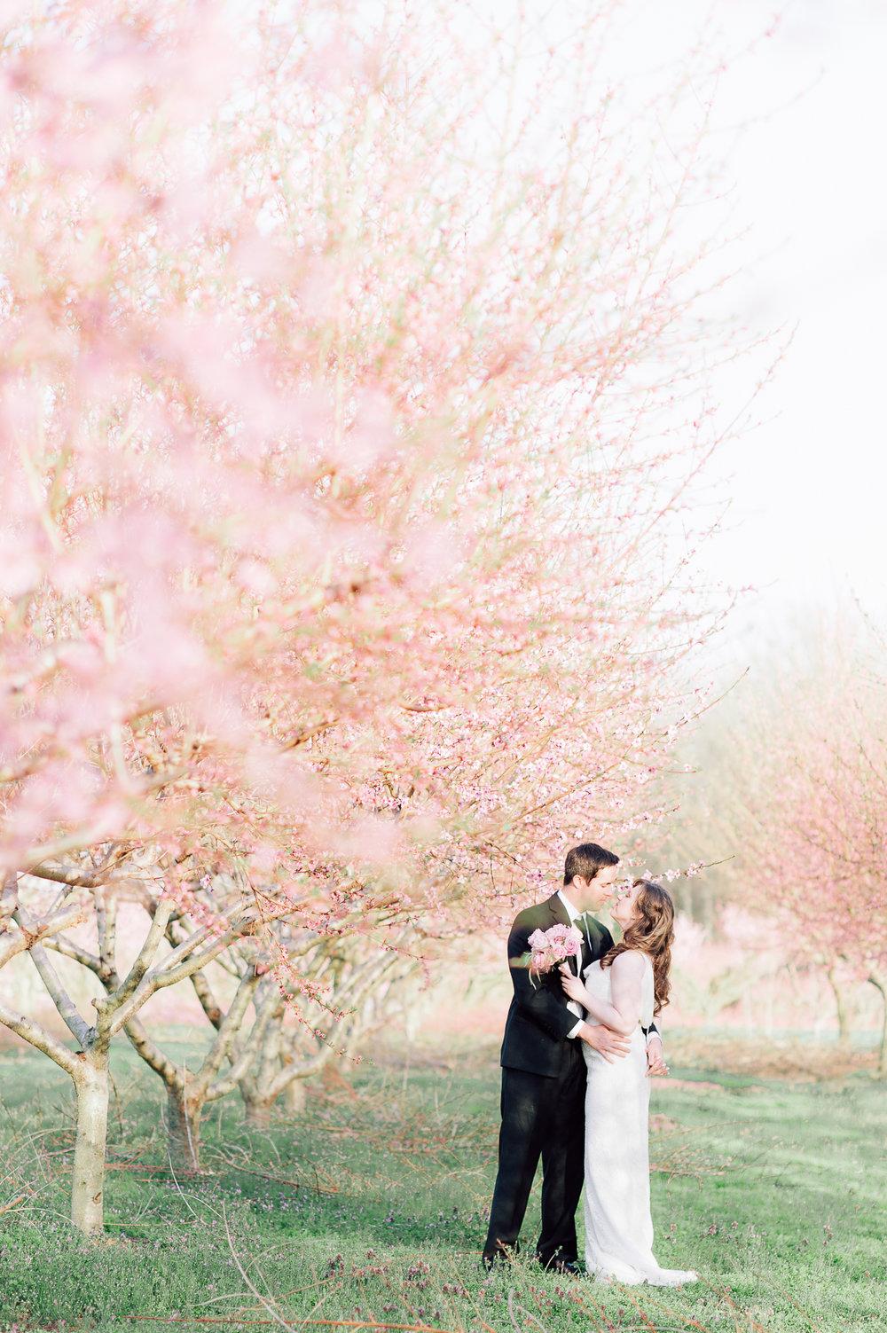 springwedding_cherryblossoms_virginiaphotographer_youseephotography_styledshoot (580).jpg