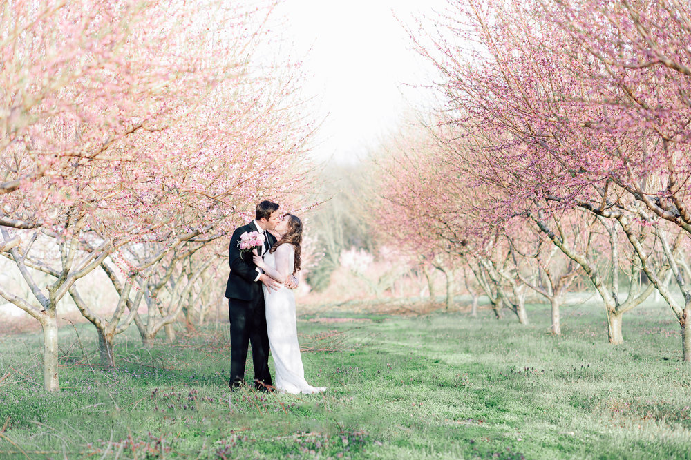 springwedding_cherryblossoms_virginiaphotographer_youseephotography_styledshoot (579).jpg