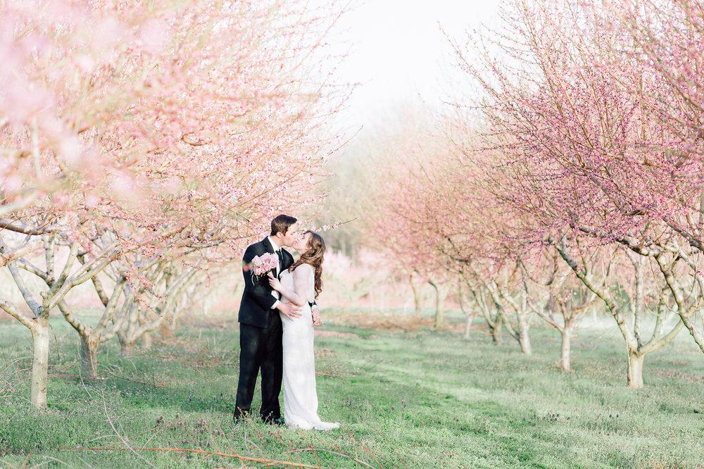 springwedding_cherryblossoms_virginiaphotographer_youseephotography_styledshoot (583).jpg