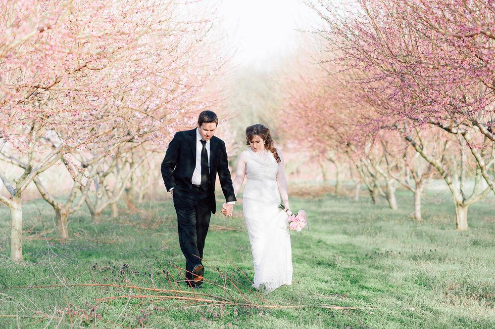 springwedding_cherryblossoms_virginiaphotographer_youseephotography_styledshoot (584).jpg