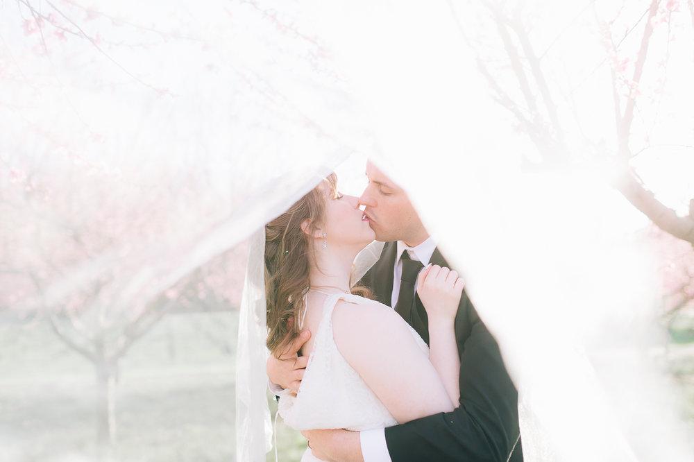 springwedding_cherryblossoms_virginiaphotographer_youseephotography_styledshoot (606).jpg