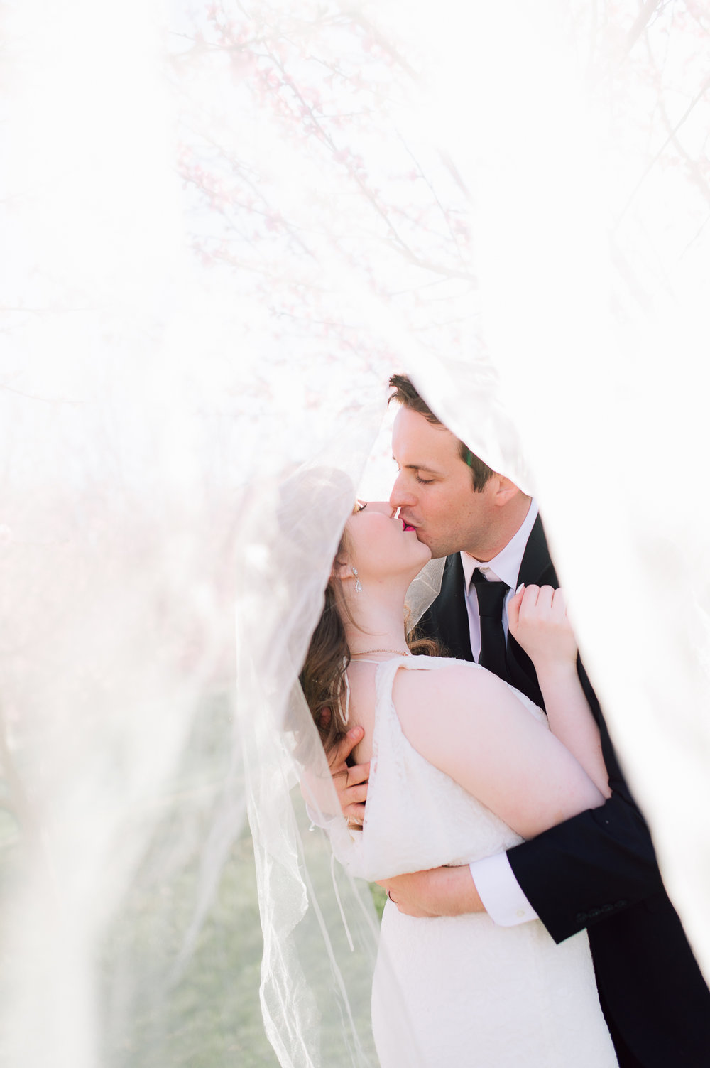 springwedding_cherryblossoms_virginiaphotographer_youseephotography_styledshoot (607).jpg