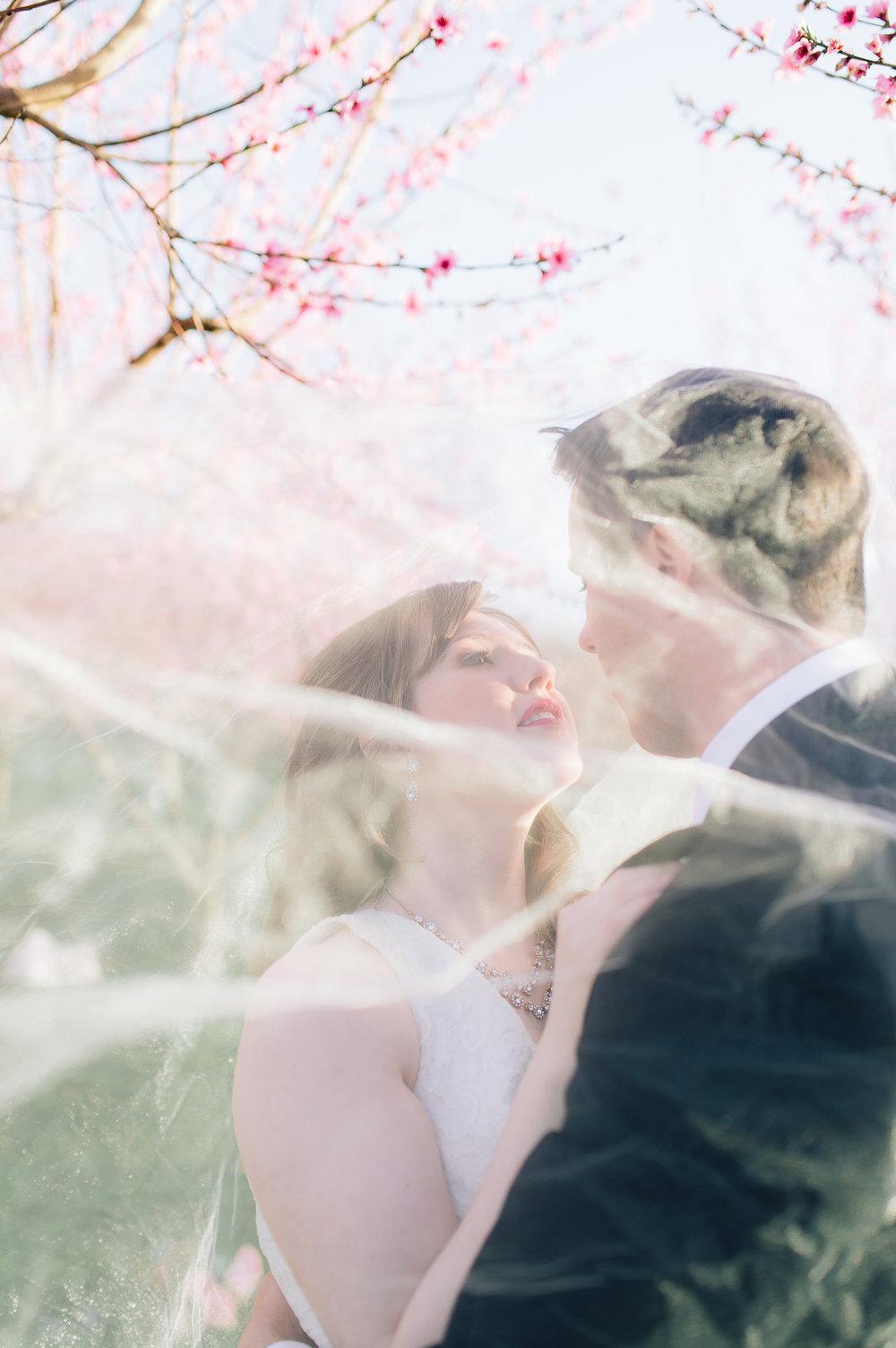 springwedding_cherryblossoms_virginiaphotographer_youseephotography_styledshoot (613).jpg