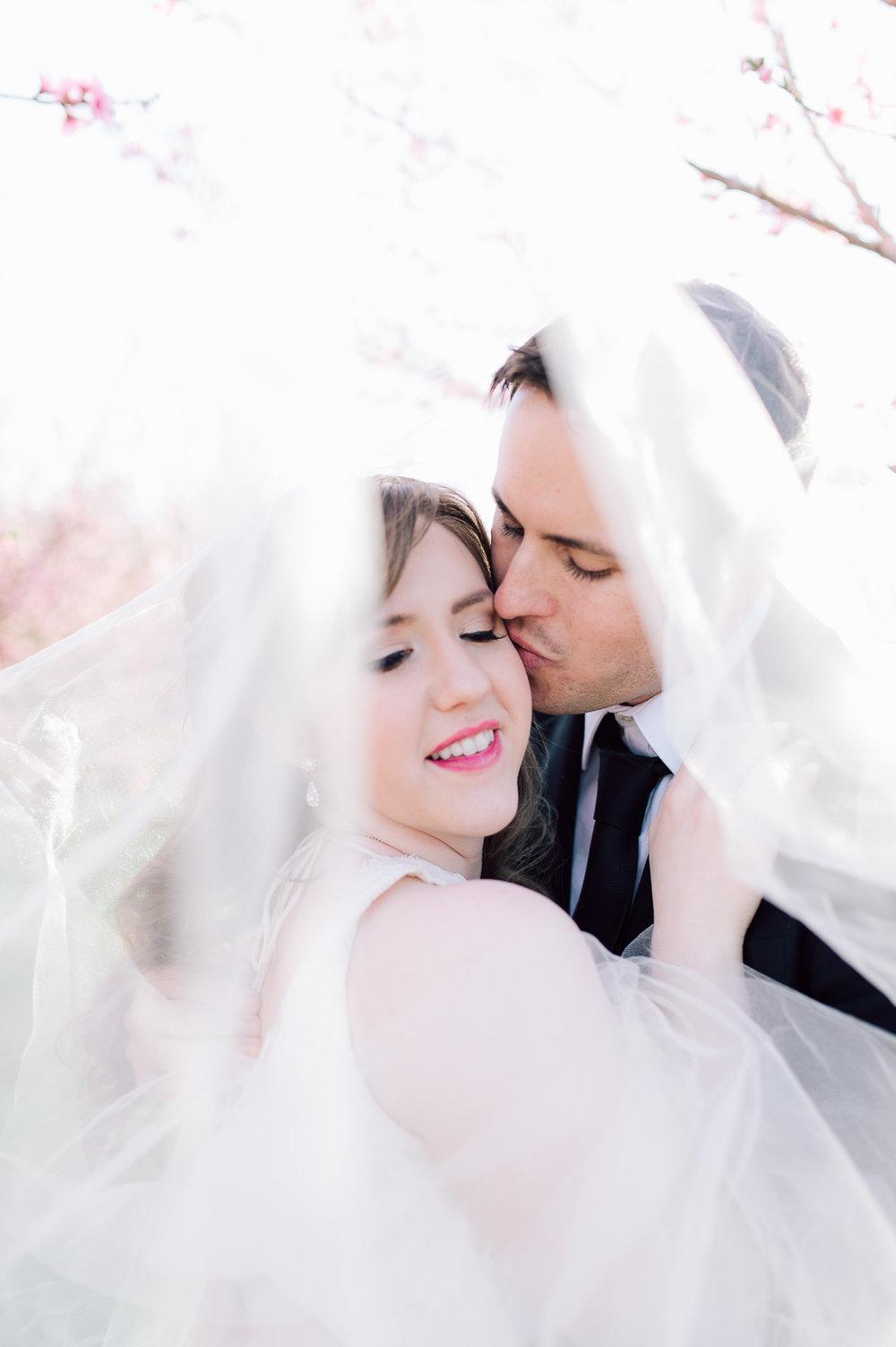 springwedding_cherryblossoms_virginiaphotographer_youseephotography_styledshoot (619).jpg