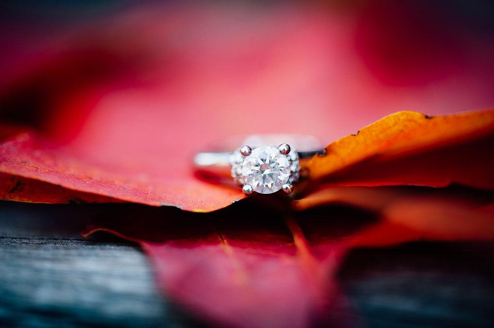 Fall_engagement_maymont_virginiawedding_youseephotography_CatherineCody (40).jpg