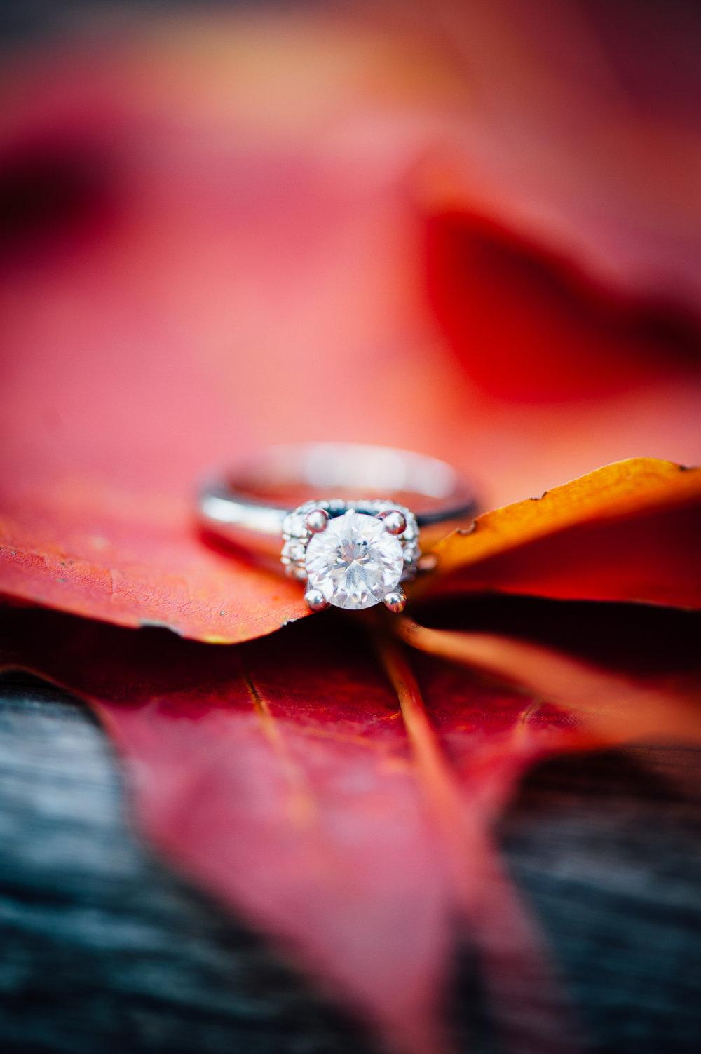 Fall_engagement_maymont_virginiawedding_youseephotography_CatherineCody (39).jpg
