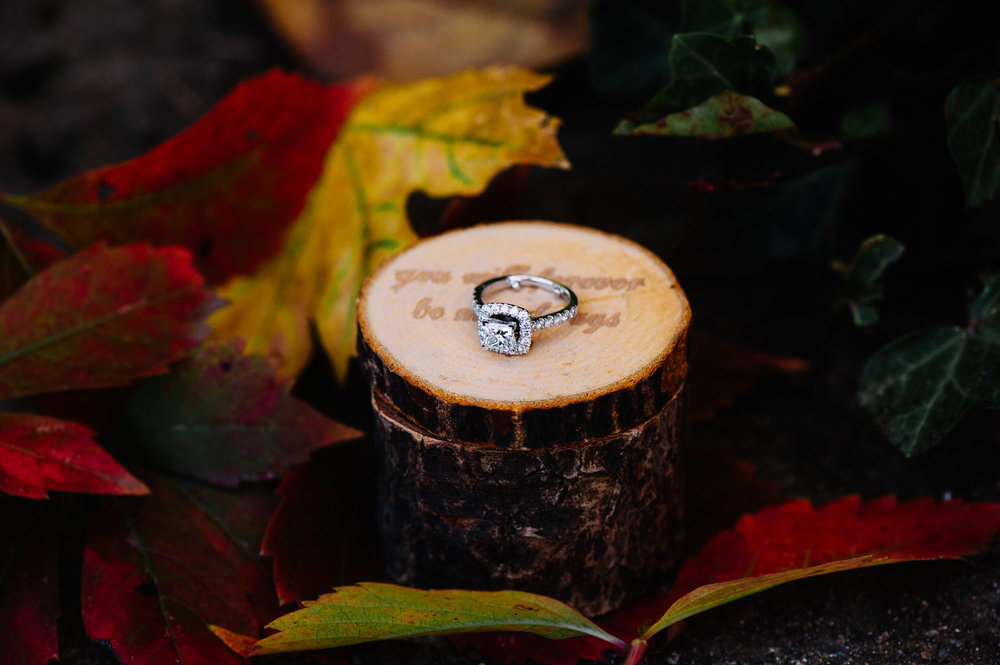 engagement_downtownfredericksburg_Fall_virginiaweddingphotographer_youseephotography_KatieKevin (37).jpg