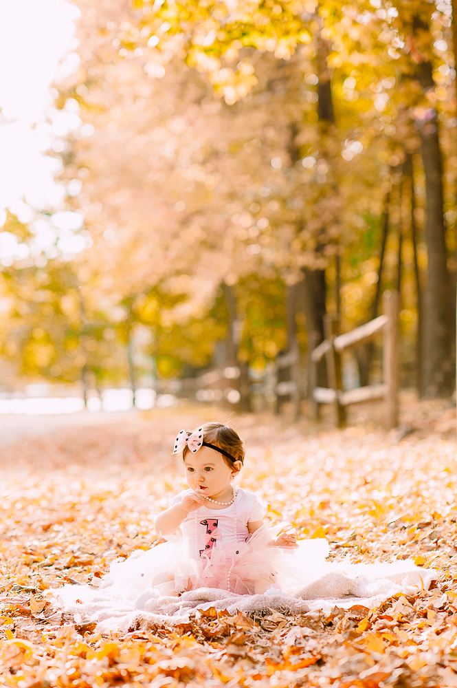 CakeSmash_Fall_FredericksburgPhotographer_youseephotography_babyTalya (8).JPG
