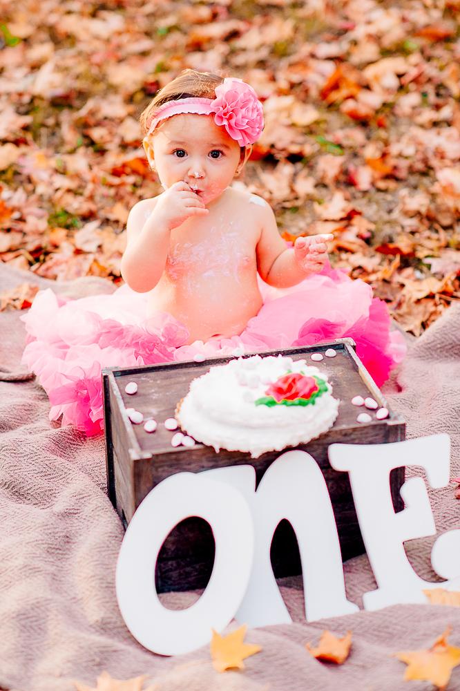 CakeSmash_Fall_FredericksburgPhotographer_youseephotography_babyTalya (24).JPG