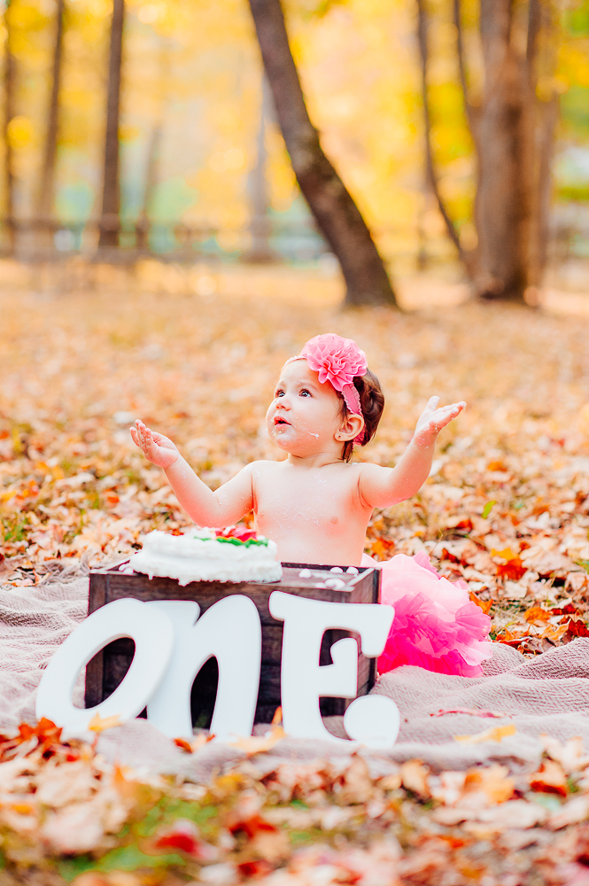 CakeSmash_Fall_FredericksburgPhotographer_youseephotography_babyTalya (26).JPG