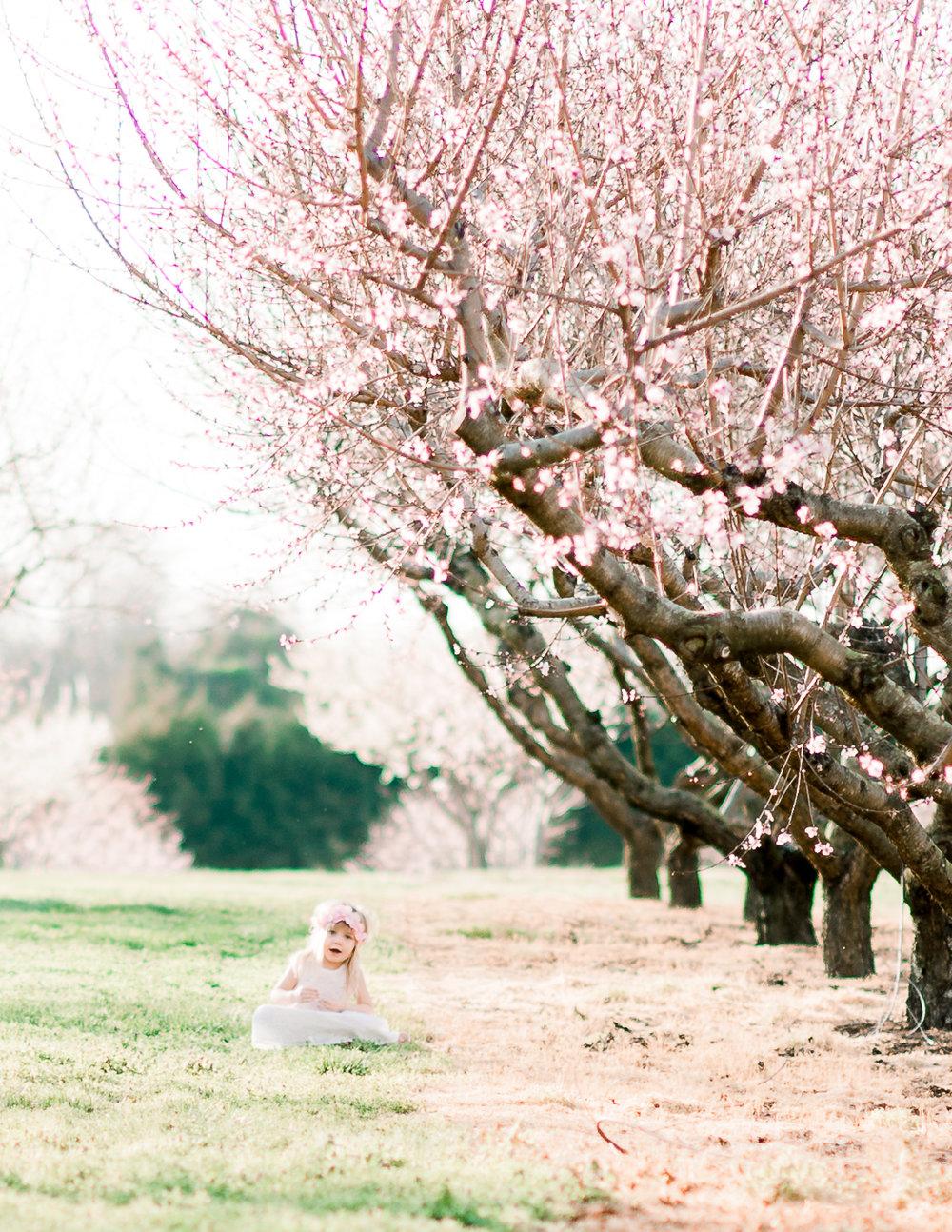 fredericksburgphotographer_cherryblossoms_MomandMe_familyphotos_youseephotography_Sarahfam (39).JPG