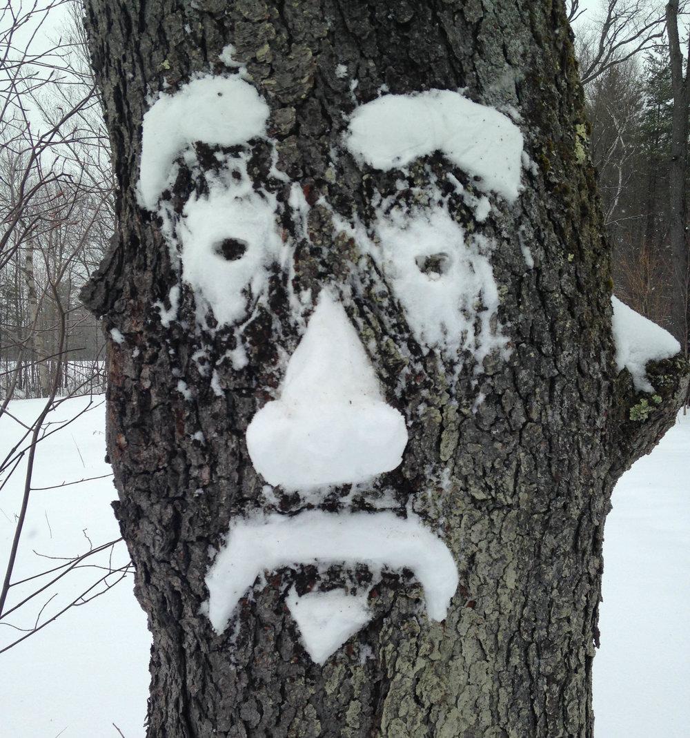snowface.jpg