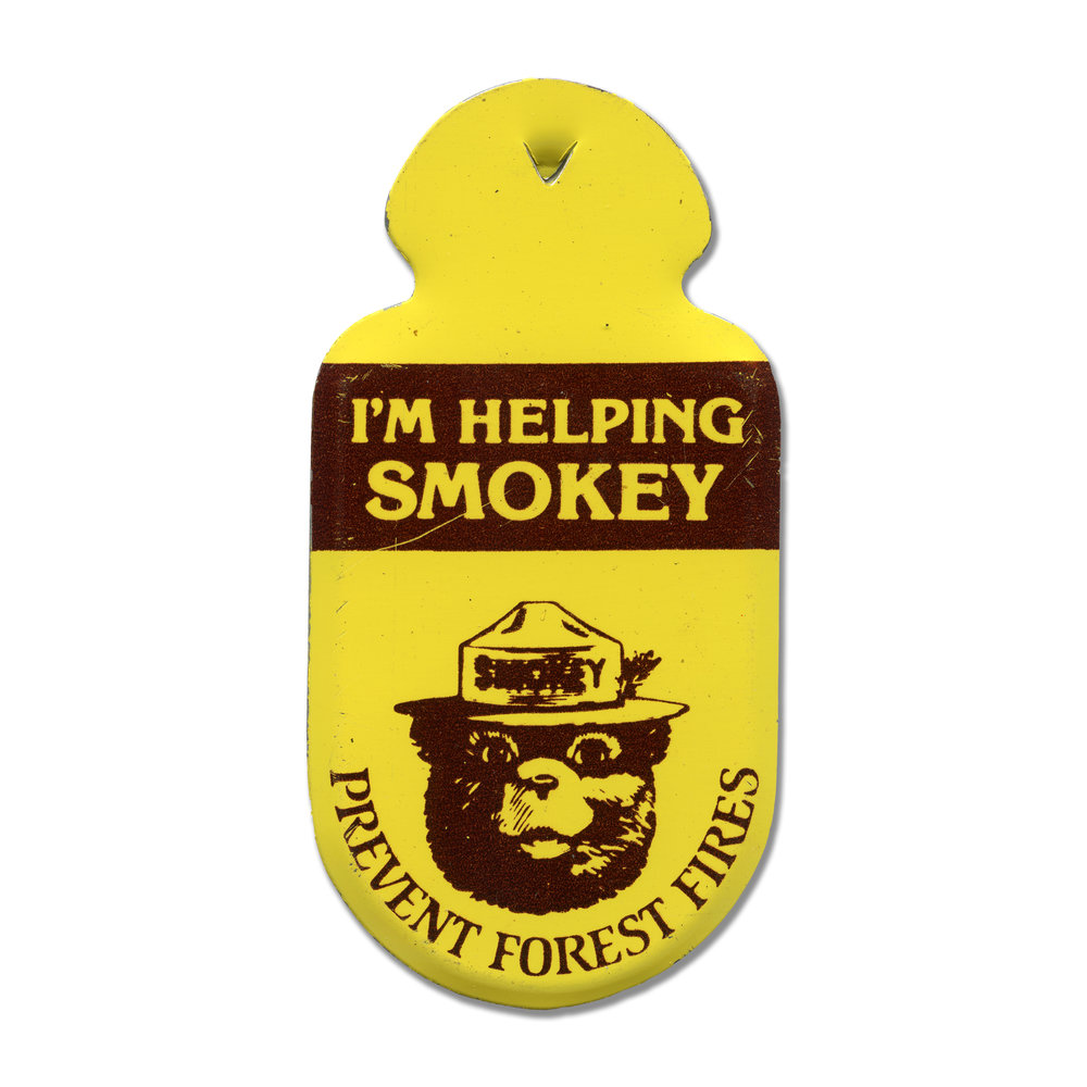 smokey_the_bear_pin.jpg
