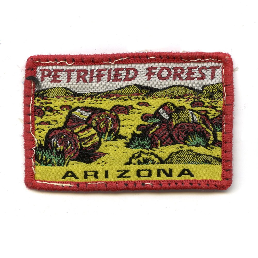 nps_patch_project_petrified_forest_national_park_service_patch_1.jpg