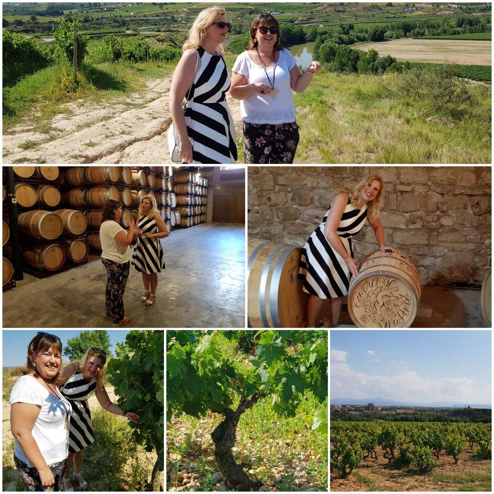 Rioja - Wijnbouw werd al eeuwen geleden verankerd in La Rioja. Ruim voordat de jaartelling startte, introduceerden kolonisten uit Libanon en Syrië, de wijnbouw in de Spaanse regio. Toen misschien wel de bekendste wijndrinkers uit de geschiedenis, de Romeinen, voet zetten op de grond van Rioja werd de wijnconsumptie – en dus ook de productie – sterk gestimuleerd. De druifluis die rond 1870 sterke schade toebracht in Frankrijk, dwong wijnhandelaren andere gronden te verkennen. Zij kwamen uit in La Rioja en creëerden daarmee de laatste voorwaarde voor de hedendaagse faam van de wijnen.Het Cantabrisch Gebergte vormt een natuurlijke bescherming voor de wijngaarden in het dal van de Ebro. De koele en vochtige zeewind van de noordkust laat de druiven daardoor gerust. Bovendien is de relatief arme kalk- en kleibodem op deze hellingen uiterst geschikt voor wijnbouw.De Rojastreek is onderverdeeld in drie regio's: het westelijk gelegen Rioja Alta, het oostelijke Rioja Baja en Rioja Alavesa dat in het noorden een klein deel van de streek beslaat. Typerend voor La Rioja zijn de twee rivieren: de Ebro en Río Oja, waarnaar de streek vernoemd is. En de stevige wijnen natuurlijk!Rioja wijn DOCa (Tempranillo/Garnacha/Garganega) wordt geclassificeerd op leeftijd zoals Joven, Crianza, Reserva en Gran Reserva