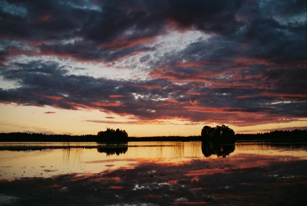 littoinen - Finlande
