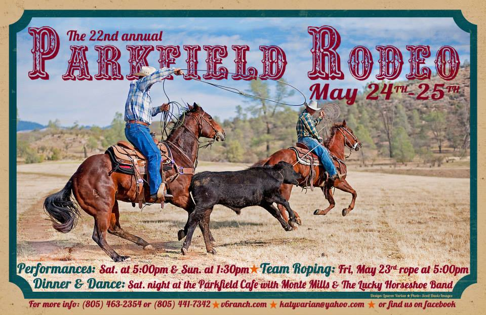 2014 Rodeo Poster