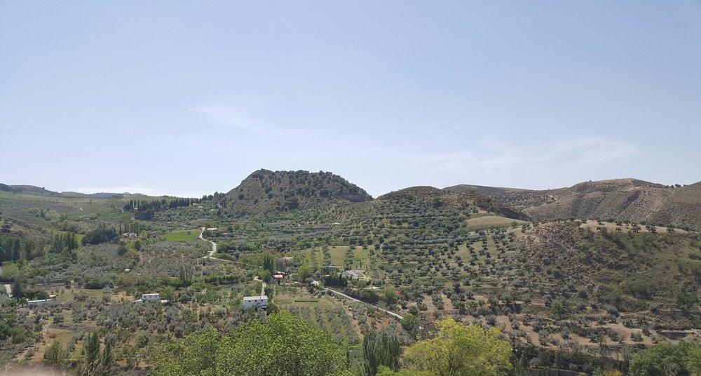 LOS CAHORROS - SPAIN
