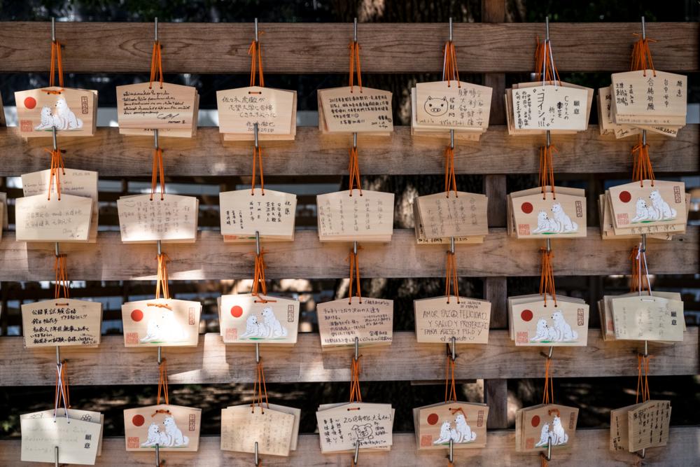 Meji Shrine, Tokyo