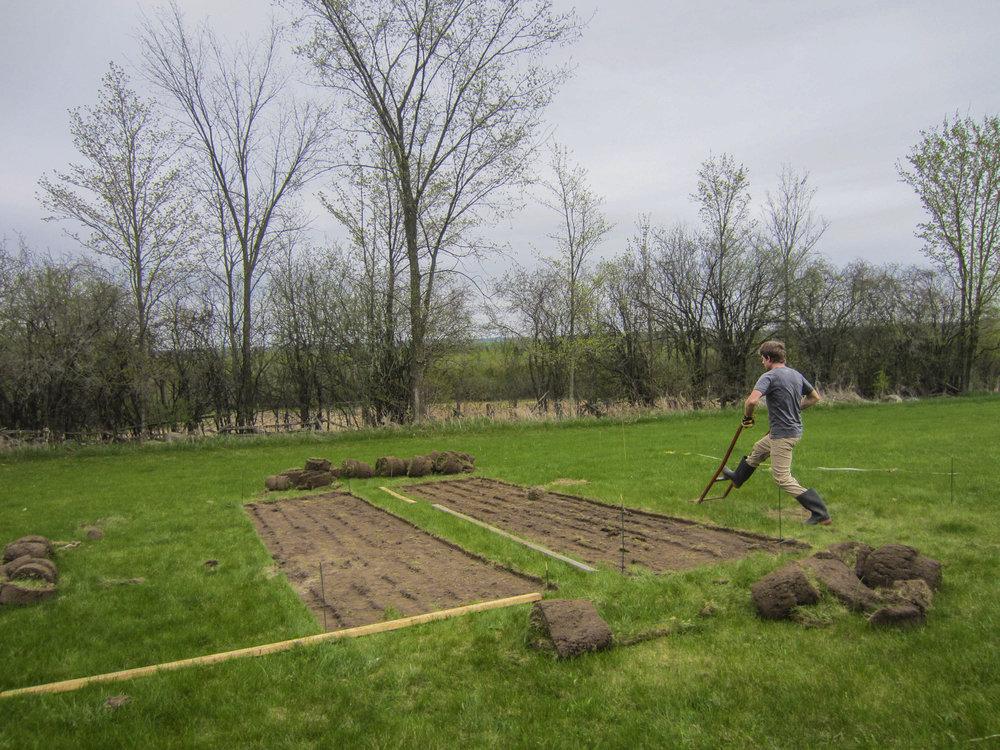 ontario gardens-15.jpg