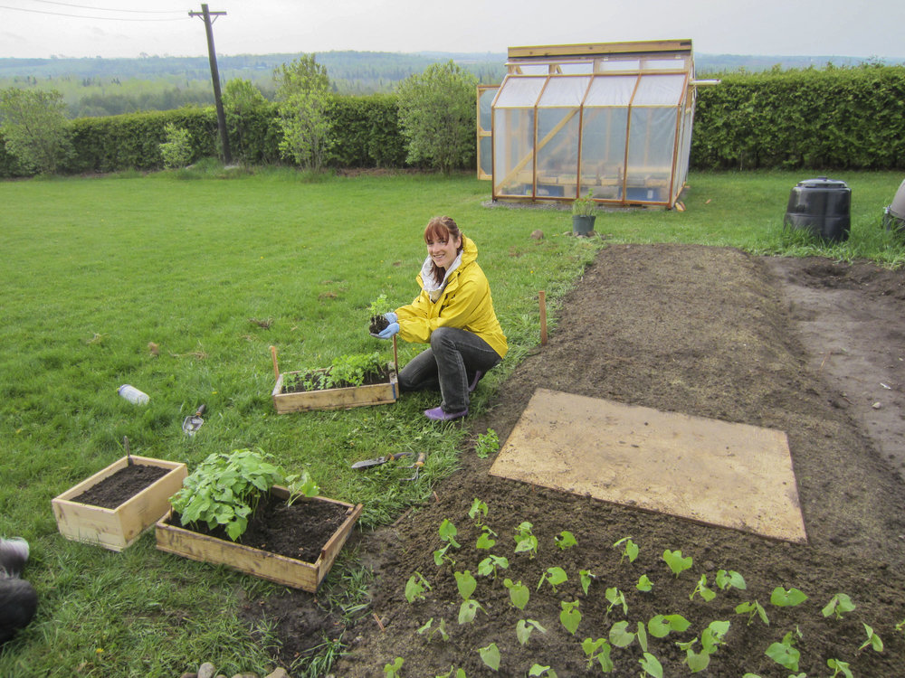ontario gardens-18.jpg