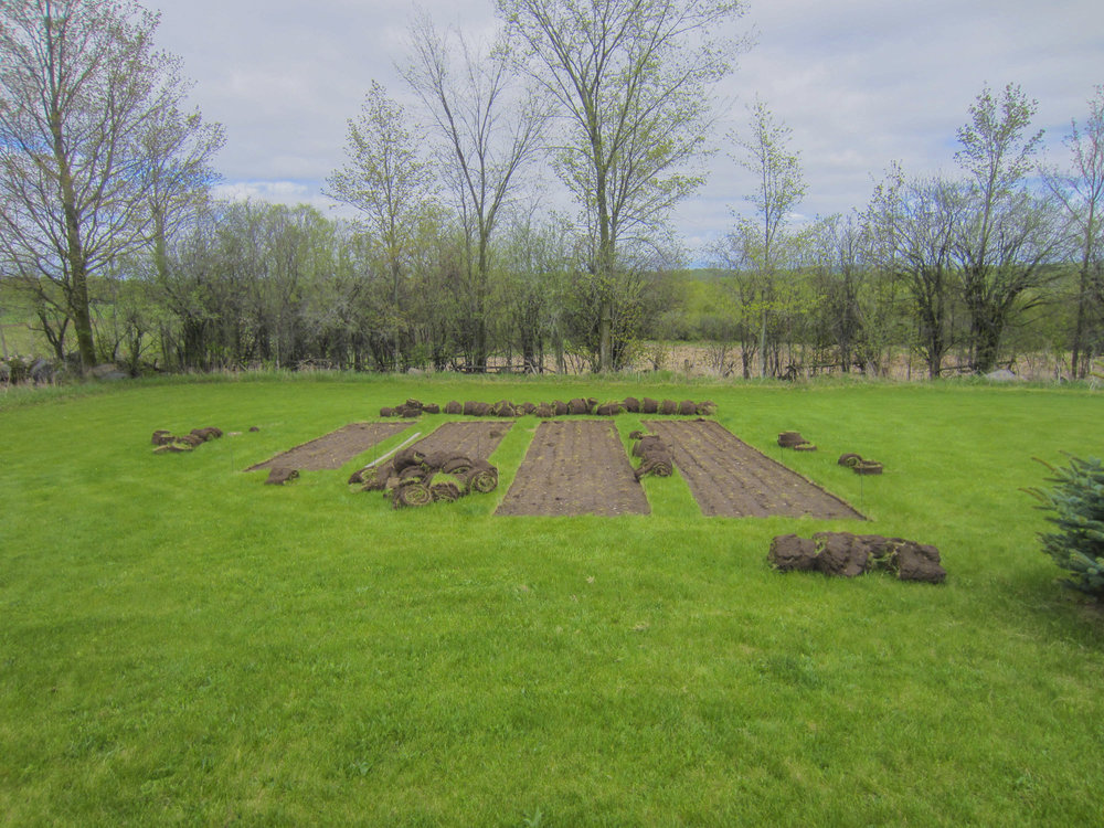ontario gardens-21.jpg