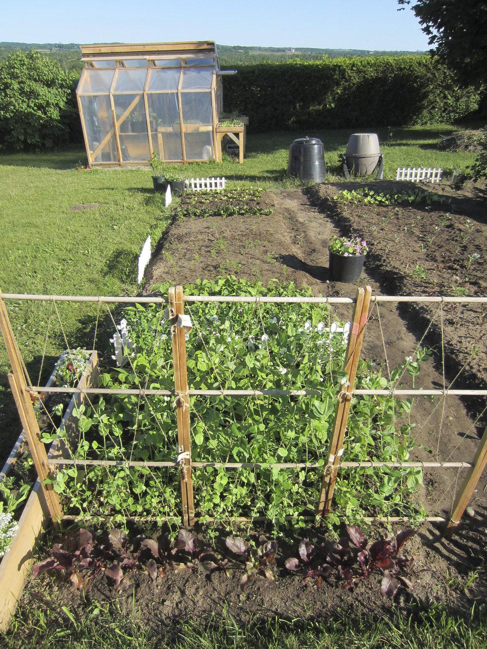 ontario gardens-110.jpg