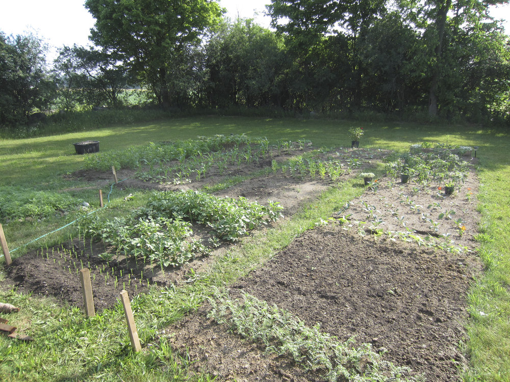 ontario gardens-112.jpg