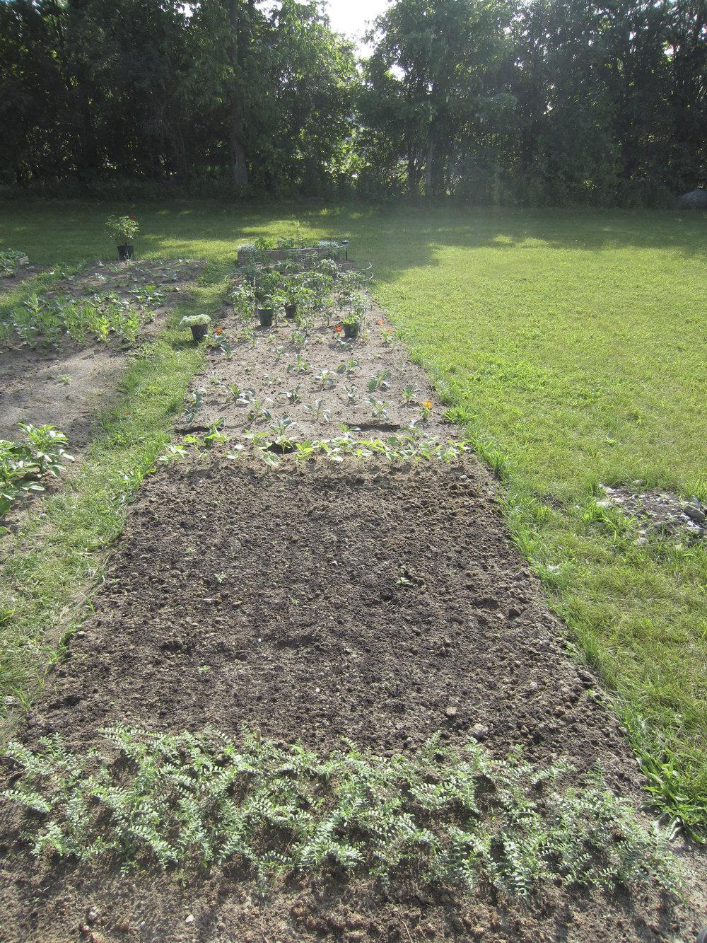 ontario gardens-113.jpg