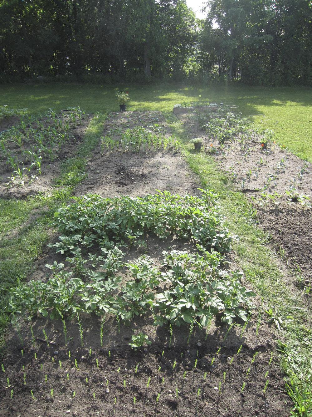 ontario gardens-114.jpg