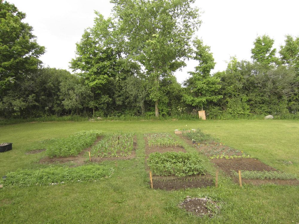 ontario gardens-146.jpg