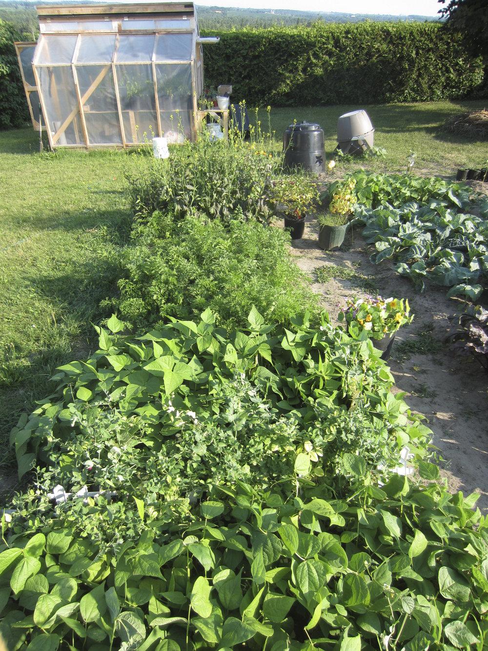ontario gardens-236.jpg