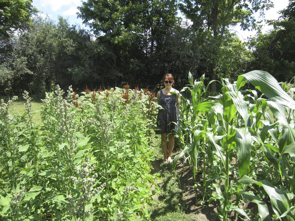 ontario gardens-244.jpg