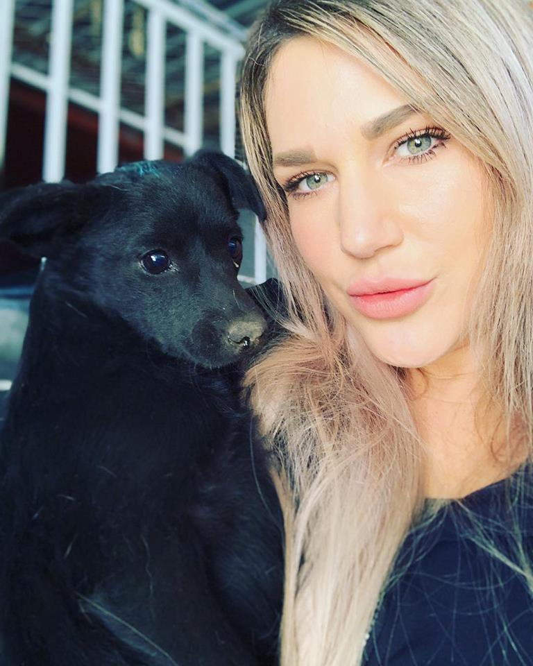 meet stephanie, - founder and President of The Animal Pad, a non-profit, all breed dog rescue that focuses on saving dogs from high kill shelters and the streets of Mexico. I recently spoke to her because I wanted to learn what goes into animal rescuing (beyond all the misconceptions and those heart-breaking commercials you see on TV), and why it's so important to rescue animals, especially for those of you looking to get a pet this holiday season. Stephanie is full of life, unapologetically herself, and her passion for life is contagious. there's so much to learn from her, so let's jump in.