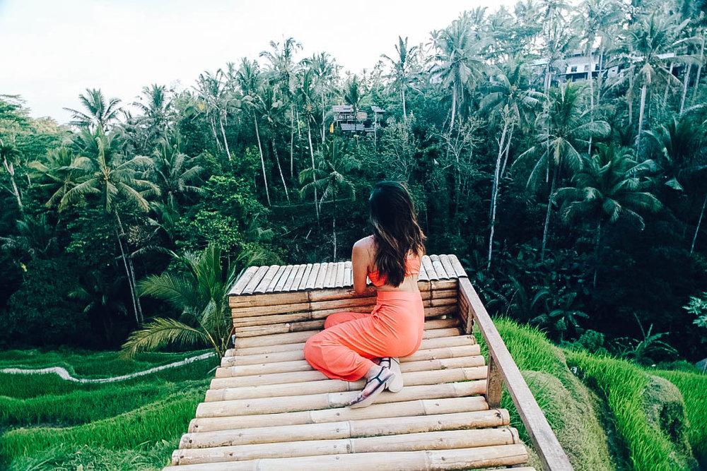 Bali- rice terrace-1.jpg