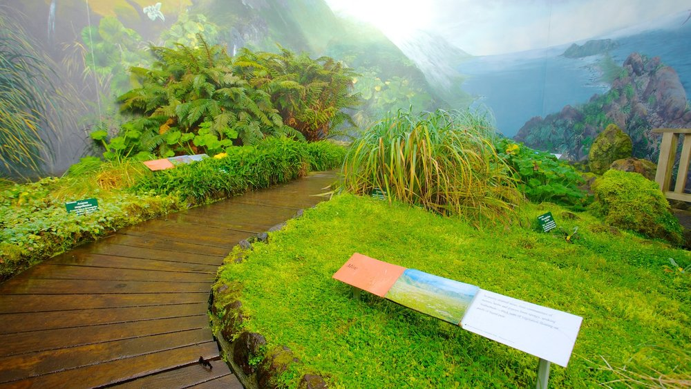 46050-Royal-Tasmanian-Botanical-Gardens.jpg