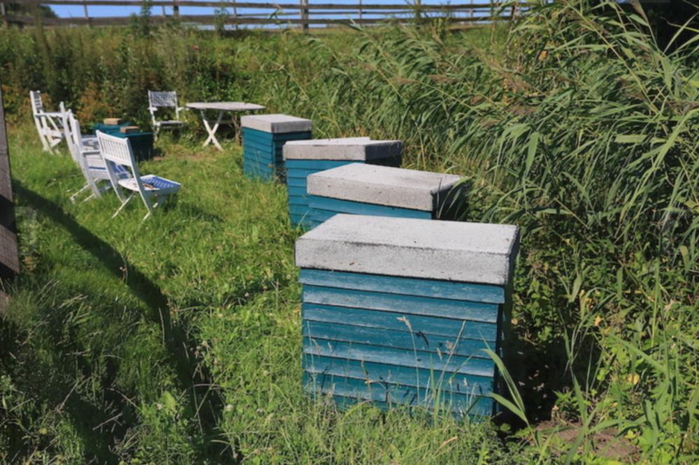 Trugstader og opstablingsstader til produktion af honning.
