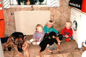 Schæferhunde og 3 børn bryggers Kassøvej.jpg